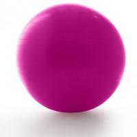 Фитбол ProForm, диаметр 65 см