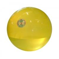 Мяч медицинский Дина Trial 2 кг