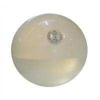 Мяч медицинский Дина Trial 4 кг